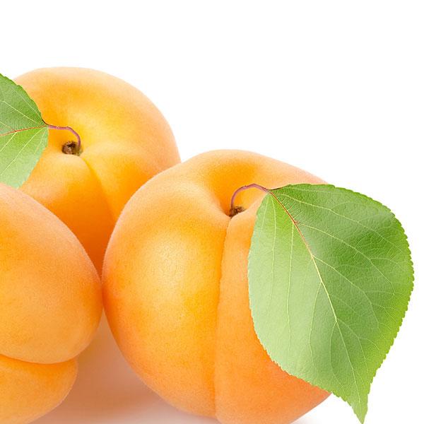 Meruňky půlené